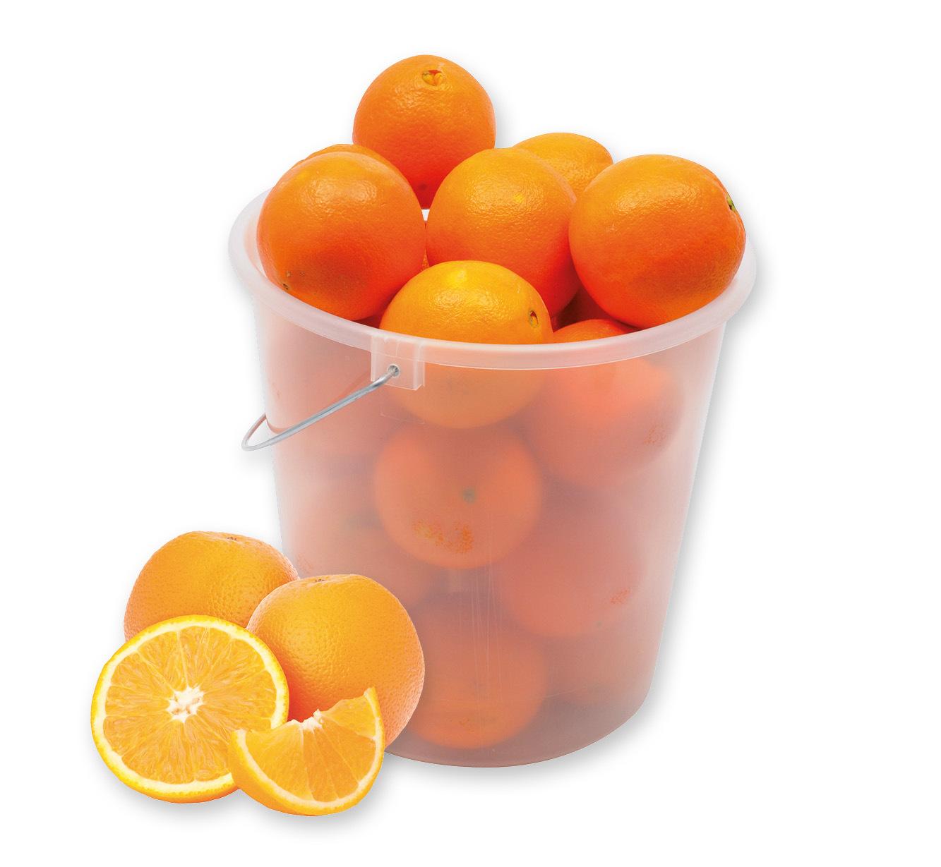 """Orangen """"Navelina"""""""
